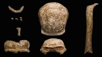 العثور على بقايا متحجرة لإنسان نياندرتال في كهف بالقرب من روما