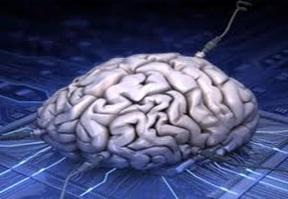 """""""ياربا"""" تحليل المعلومات السيطرة دماغ 1-6928.jpg"""